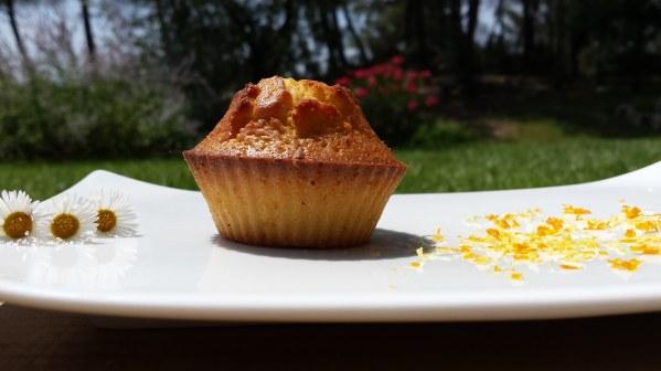 Muffins aux zestes d'orange et de citron