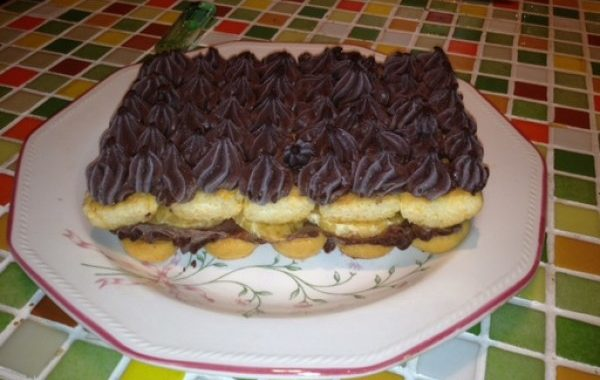 Gâteau rapide chocolat clémentines