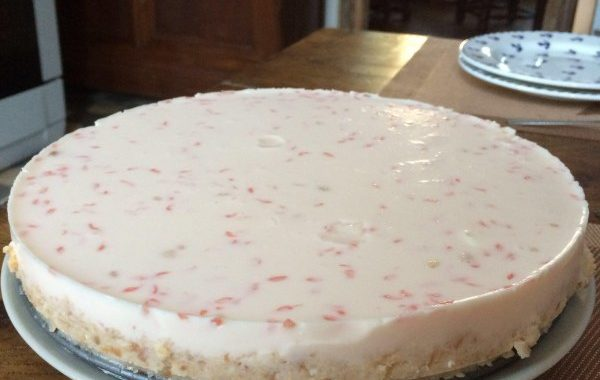 Cheese-cake au pamplemousse