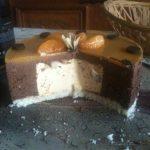 Bavarois chocolat, coco et mandarine