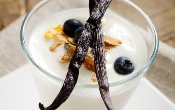 Yaourt crémeux à la vanille en yaourtière