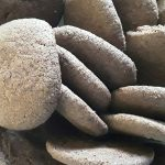Cookies au cacao