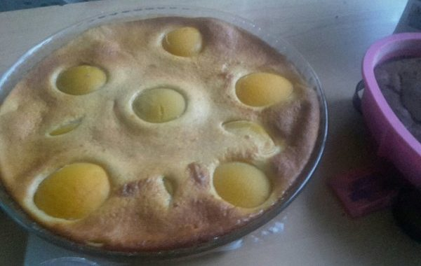 Gâteau flan aux abricots