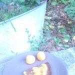 Fondant choco-banane-pêche