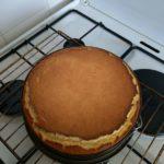 Irish Bailey's cheesecake